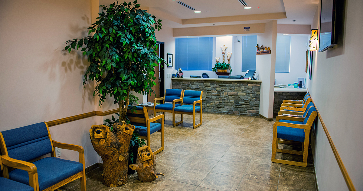 welch-ortho-office-tour-004